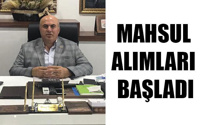 MAHSUL ALIMLARI BAŞLADI