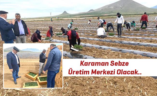 Karaman Sebze Üretim Merkezi Olacak..