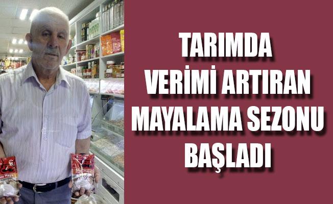 TARIMDA VERİMİ ARTIRAN MAYALAMA SEZONU BAŞLADI